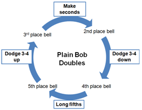 Plain Bob Doubles - cycle of work